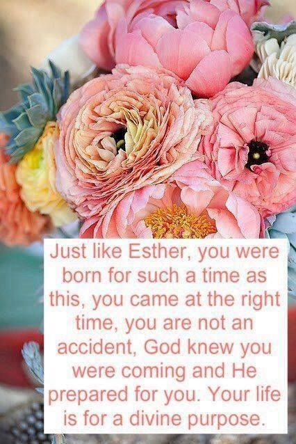 ESTHER  4:14  You were born for such a time as this.  So was I.  God places us within human history at the exact right time for the gifts, talents, skills, and place where we can be the most effective for God's kingdom and glory.  Even if it is not where we thought we would be.
