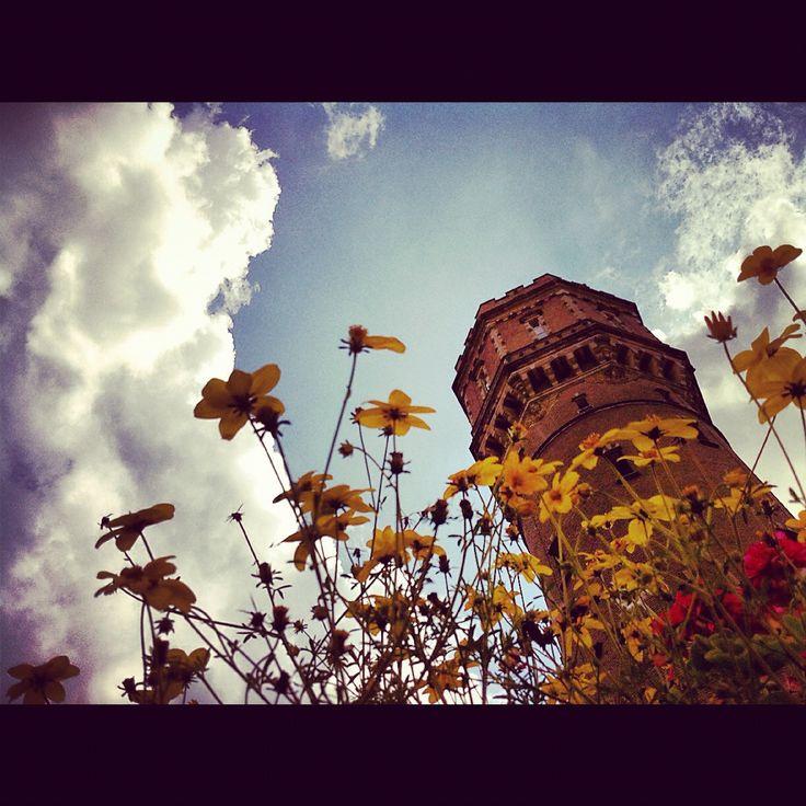 De fraaie watertoren van Twickel aan de rand van Delden is al van verre te zien.
