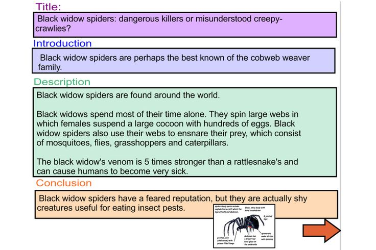 Explicitly demonstrate the structure of an Information Report with this engaging IWB lesson.