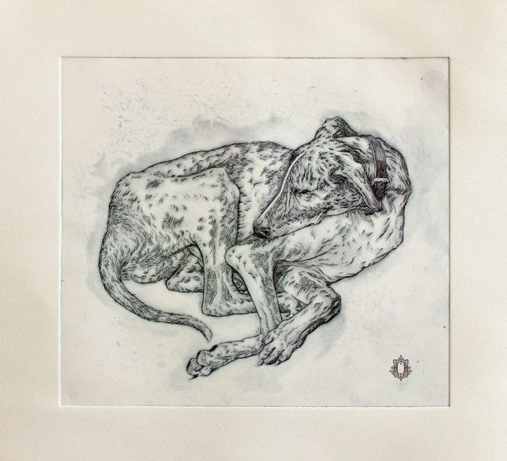 "Saatchi Online Artist: Oriol Angrill Jordà; Monotype, 2012, Printmaking ""Dog lying"" #bestinshow"