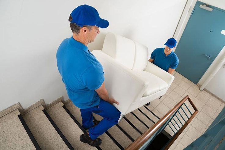 Gentle Giant Removals have experienced and professional relocation personnel