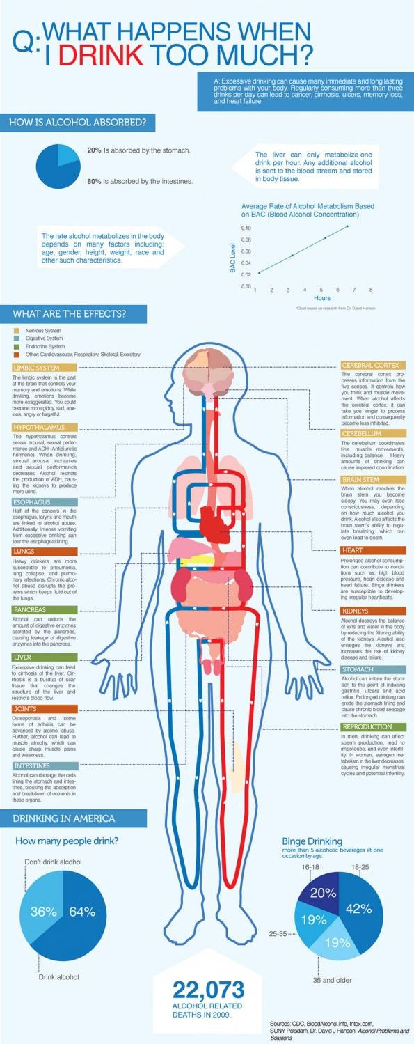 Excessive Drinking & The Effects On Your Body                              …