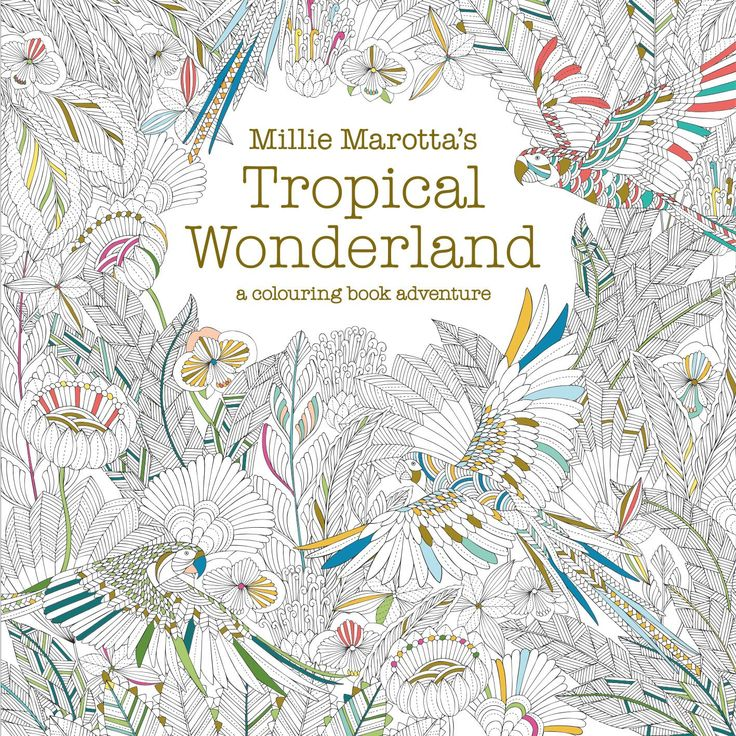 Millie Marottas Tropical Wonderland A Colouring Book Adventure Amazoncouk