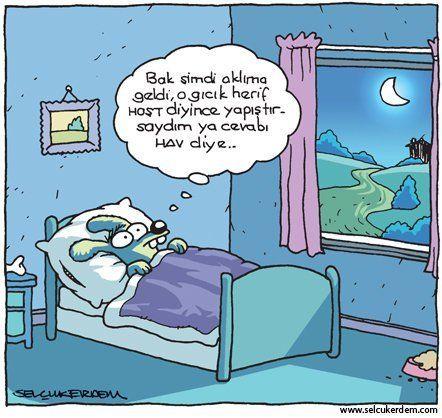 Nerede Kalmıştı? Gece yarısı günü düşünmelerde... Bu sıralar iyice yoğunlaştı bu durum bende; dersler, kalabalıklar ve olaylar derken. Çok şükür durumlar iyi, ama ben derslerden ötürü yorgunum. :) #Karikatürler #HayvanlıKarikatürler