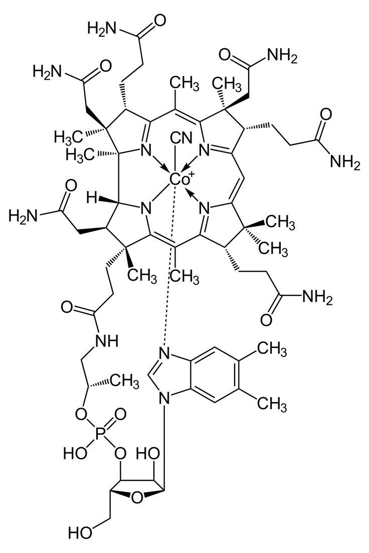 194 best pancreatitis chronic and acute images on pinterest vitamin b12 deficiency wikipedia nvjuhfo Choice Image