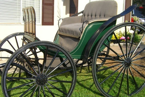 Beautiful Show Carriage Horse drawn carriage driving ads  Norco California