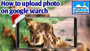 How to upload photo on google search engine easily      Hi Friends, Of course, if you want to bring Blogger Blog to the Search Engine w...