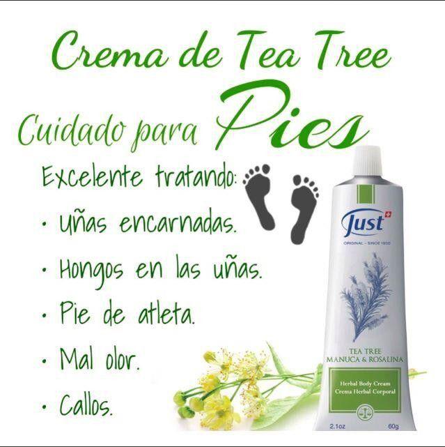Pin By Ronald Rivera Mendez On Todo Just Essential Oils Aromatherapy Aromatherapy Oils Tea Tree