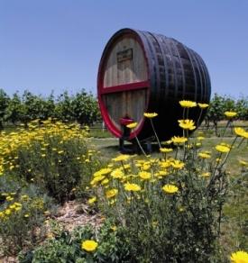 Truro Vineyards Cape Cod #wine @Gretchen Schaefer Schaefer Schaefer Schaefer Lohse WineMerchants