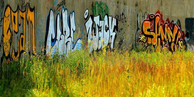 Urban art - St. John's NL