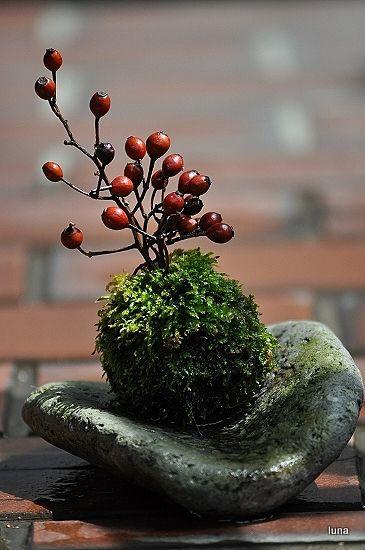 南天 simple arrangement of moss, berries, and stone