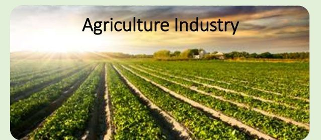 Agriculture sector is the another boom in the commodity market. Investors can buy agro stocks listed in market. There are many reasons to prefer agricultural sector over another. Commodity Basis suggest you, why should you buy agricultural stocks and why agriculture stocks are expected to bring another boom in commodity market. Commodity Basis gives a complete historical data and Intra-day cash market data.