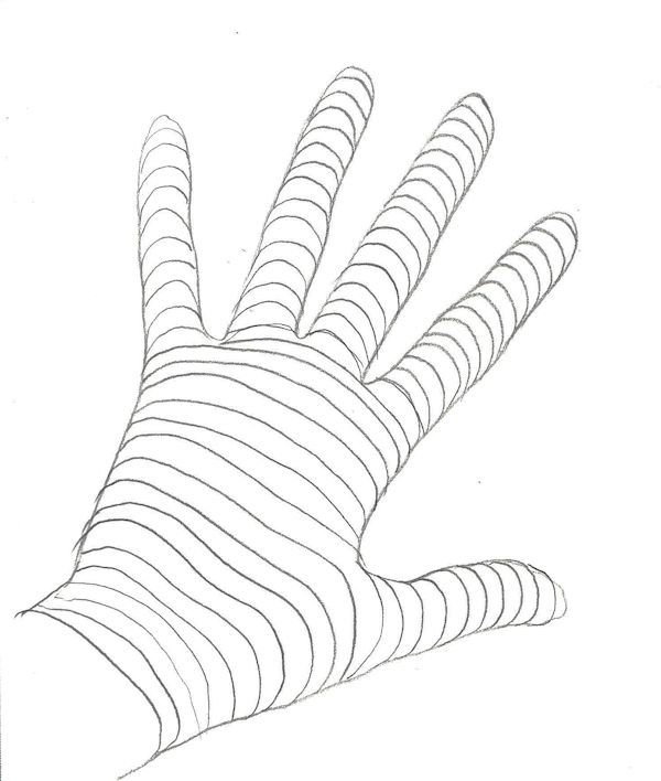 Contour Line Drawing Photo : Best images about cross contour lines on pinterest