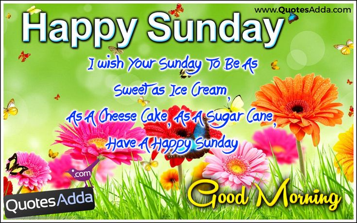 25+ Best Ideas About Happy Sunday Images On Pinterest