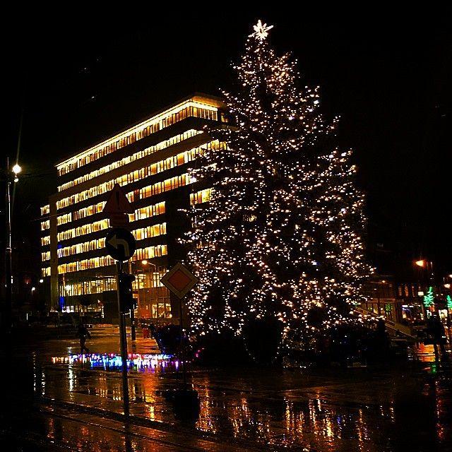 Christmas tree, Main Square