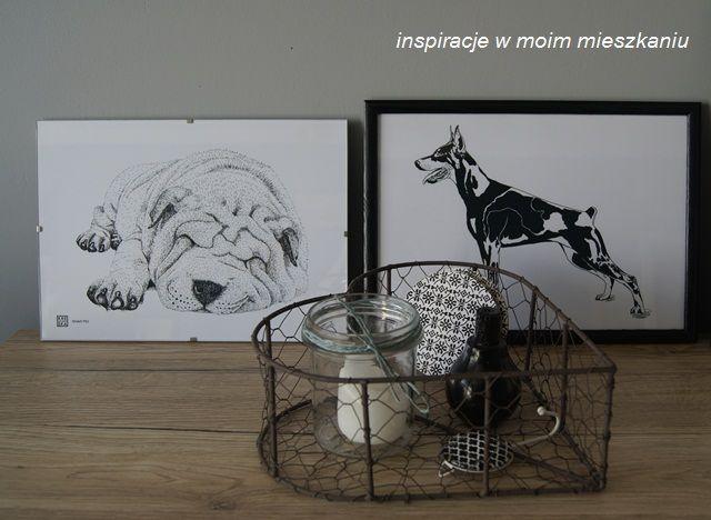 inspiracje w moim mieszkaniu: Grafika z rasowym psem lub kotem dekoracją wnętrza...