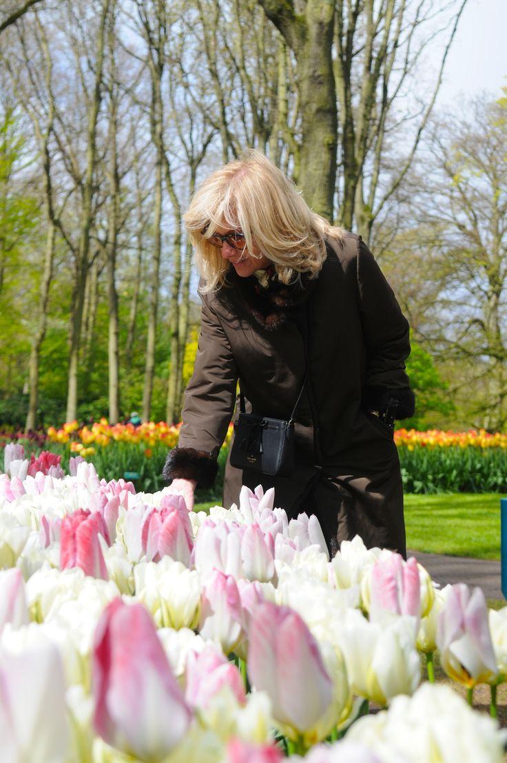 Reviving the beautiful memories of the tulip season 2017!