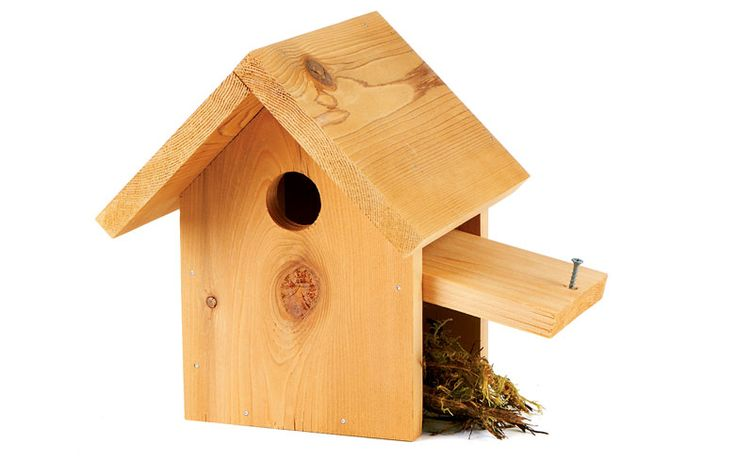 How to attract beautiful, bug-eating bluebirds with an easy birdhouse craft you can do in an afternoon. | Via Organic Life