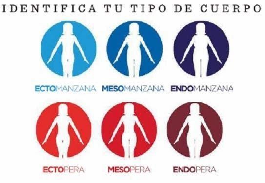 ENTRENAMIENTO SEGÚN EL TIPO DE CUERPO DE MUJER | Aptitud Fitness