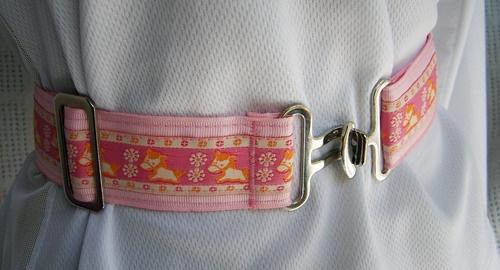 Pony Ribbon Belts