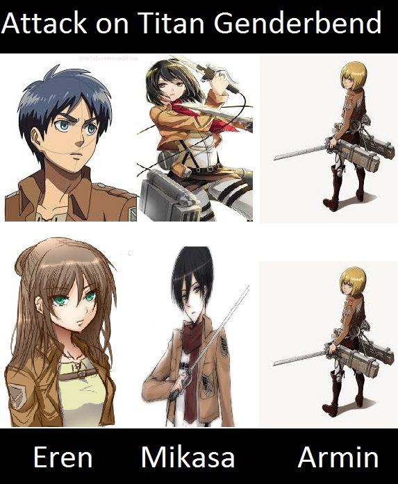 Attack On Titan Genderbend - Google Search