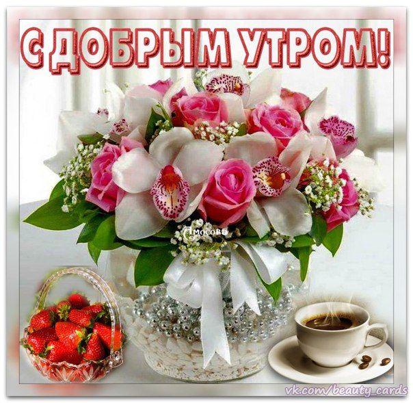 Открытки цветы красивые букеты с добрым утром