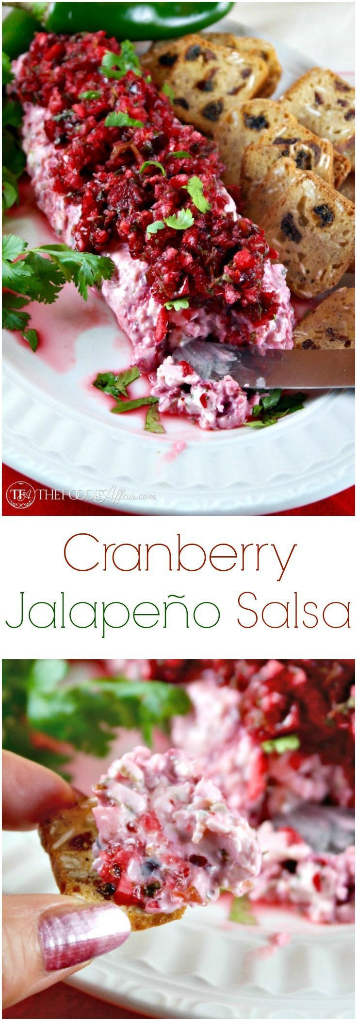 Add this festive Cranberry Jalapeno Salsa to your holiday appetizer menu! No oven or stovetop required! Foodie Affair