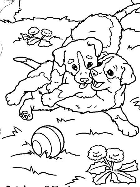 funny puppies coloring pages for kids disney coloring pages - Cute Coloring Books
