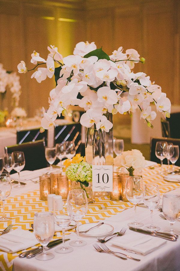 incredible white orchid centerpiece // photo by Dave Richards