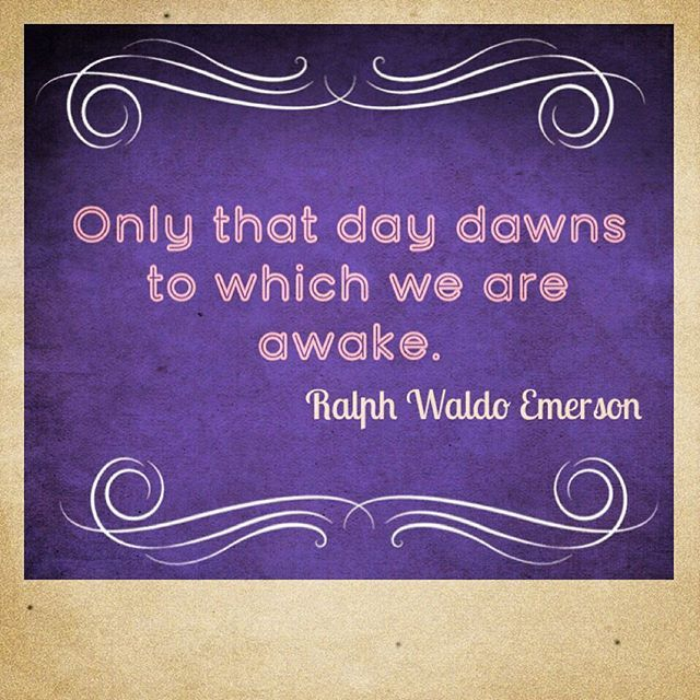 Loving his quote which I heard read by Jon Kabat Zinn. It's meaning? Stay present moment to moment. Pay attention. Check in. #present #awareness #now #mindfulness #dawn #awake #grounded #outdoors #wednesday #morning