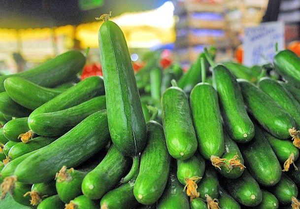 tazemasa.com, taze, masa, tazemasa, organik ürün, kahvaltılık, meyve, sebze, zeytin, zeytinyağı, salça, turşu, sirke, bakliyat, erişte, haftanın, sepeti, mevsim, takvim, yöresinde, gıda, kolaylık, çeşitlilik, sağlık, bütçe tasarrufu, yemek, haziran, salatalık