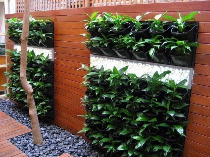 128 Best Images About Plantas Y Jardines On Pinterest Pallet Herb Gardens Garden Ladder And