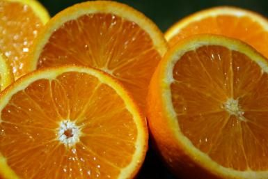 Feed Hungry Orioles in Your Backyard: Orange halves are one of orioles' favorite foods.