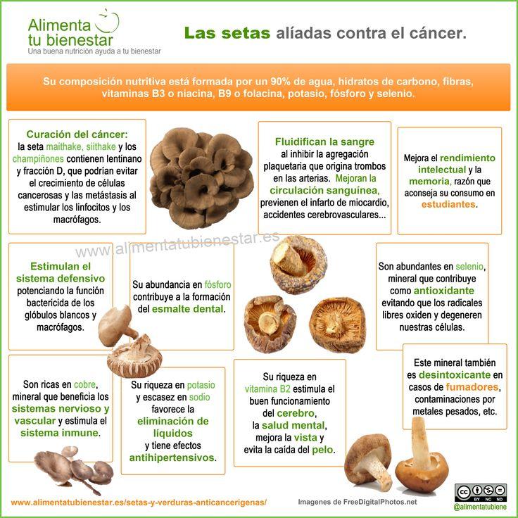 #infografia Setas, aliadas contra el cáncer: su composición nutritiva se compone de un 90% de agua, hidratos de carbono, fibras, vitaminas B3 o niacina, B9 o folacina, potasio, fósforo y selenio.