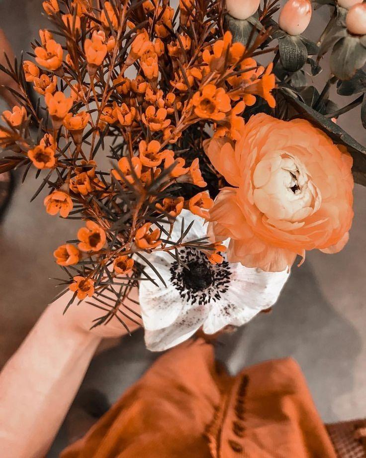 c h i l l a x / burnt orange ❀ @talia2art | Orange aesthetic ...