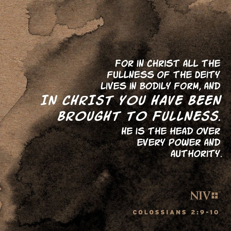 NIV Verse of the Day: Colossians 2:9-10