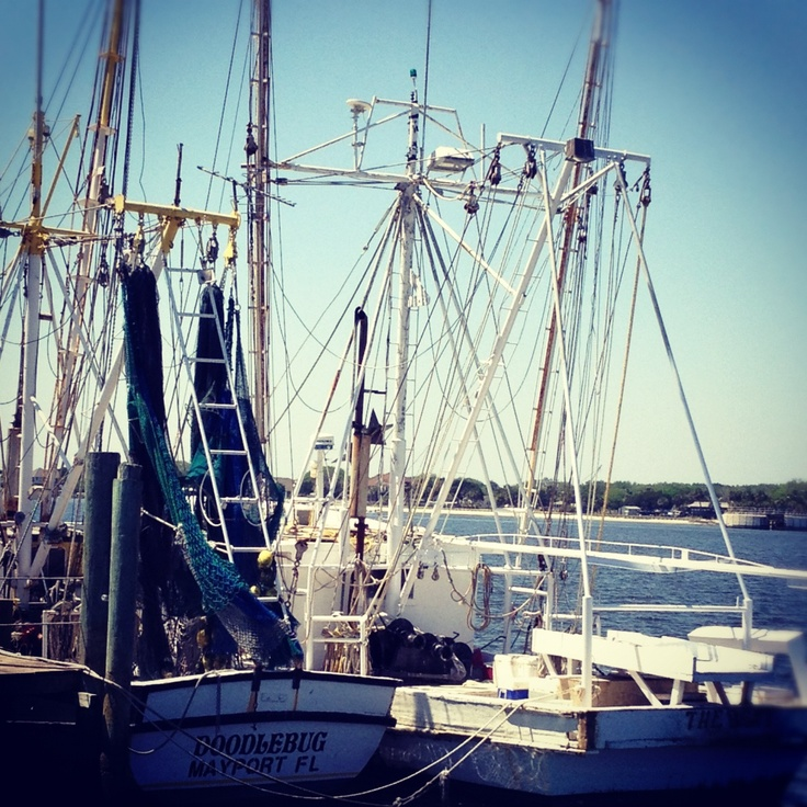 Paradise Key South Beach Jacksonville Fl Homes For Sale