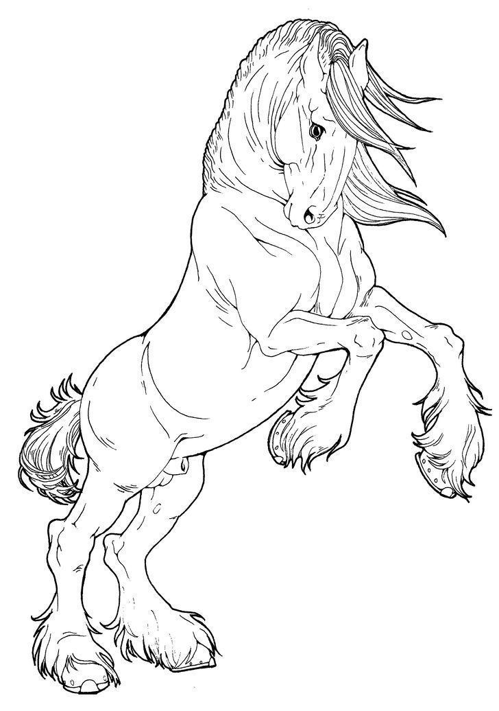 Clydesdale Horse Coloring Pages Horse Coloring Pages Horse Drawings Horse Coloring