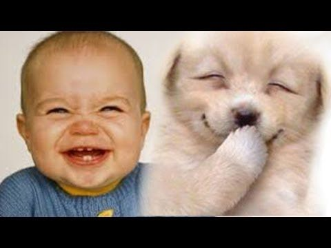 Funny Babies Laughing At Dogs 2015