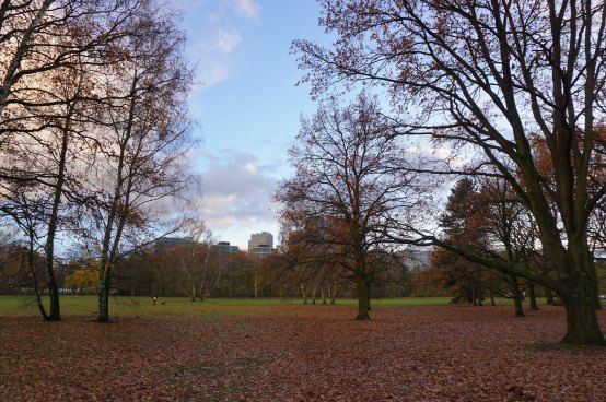 Autumn in Tiergarten