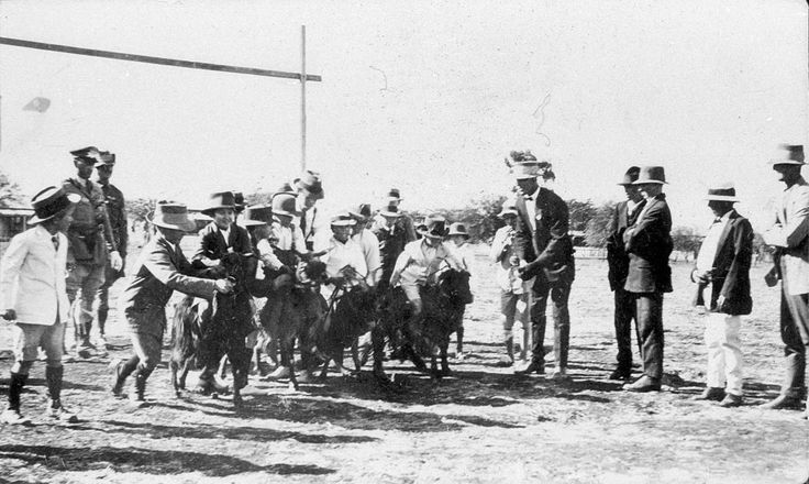 Goat Race - Thargomindah, QLD - State Library of New South Wales c. 1916