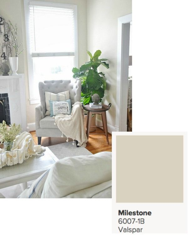 LMB Rental Paint Colors