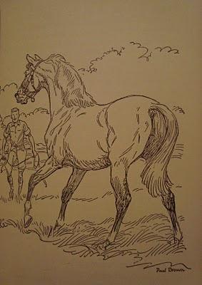 Illustrator - Paul Brown  my favorite horse artist