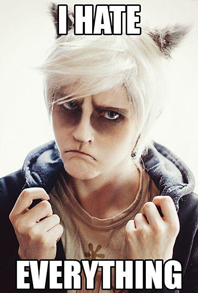 Grumpy Cat: I HATE EVERYTHING by WiseKumagoro.deviantart.com on @deviantART