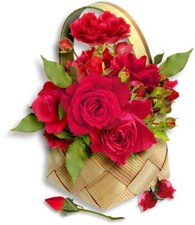 Růžové růže, růže ve váze, fialové růže, PNG růže Krásné modré růže, PNG Růže koš s růžové růže, barevné růže motýl, růže kytice, žluté růže hrnek - eva6 Blog - K -Csiza J-néErzsike přítelkyně, A-Antalffyné Irene, Csorbáné Ildikó, A-Gizike můj přítel, A-Ildykó můj přítel, A-Kata přítelkyně, A-Klárika můj přítel, A-Klementinától I, A-Kozma Anna Lidia, A-Margitka můj přítel, A-Maroko můj přítel, A-Mirjam přítelkyně A-Little Red Riding můj přítel, A-Suzymamától, Adelaide Hiebel obrazy, Alan…