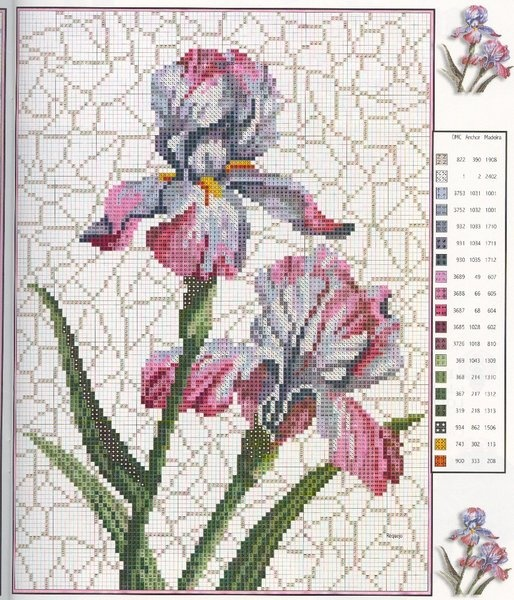 iris free cross stitch                                                       …                                                                                                                                                                                 Más