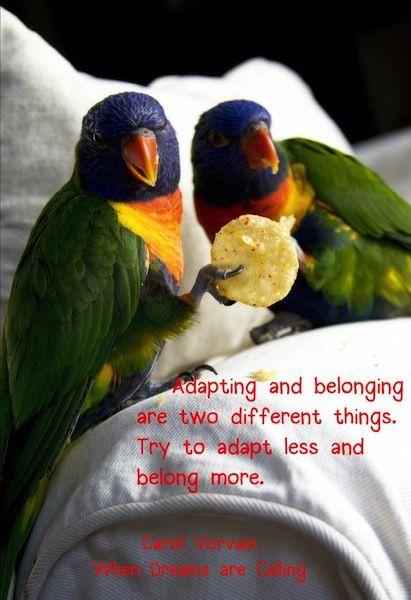 Adapt Less, Belong More
