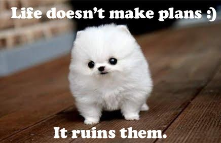 Cute Puppy Quotes | In...