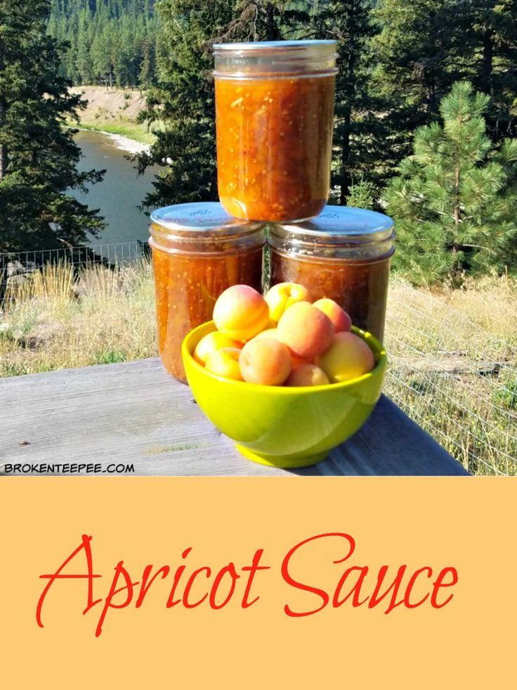 apricots, apricot sauce, apricot recipes
