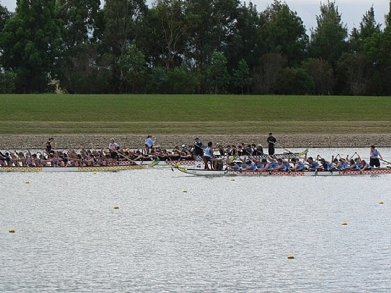 Dragon Boat Racing at Penrith